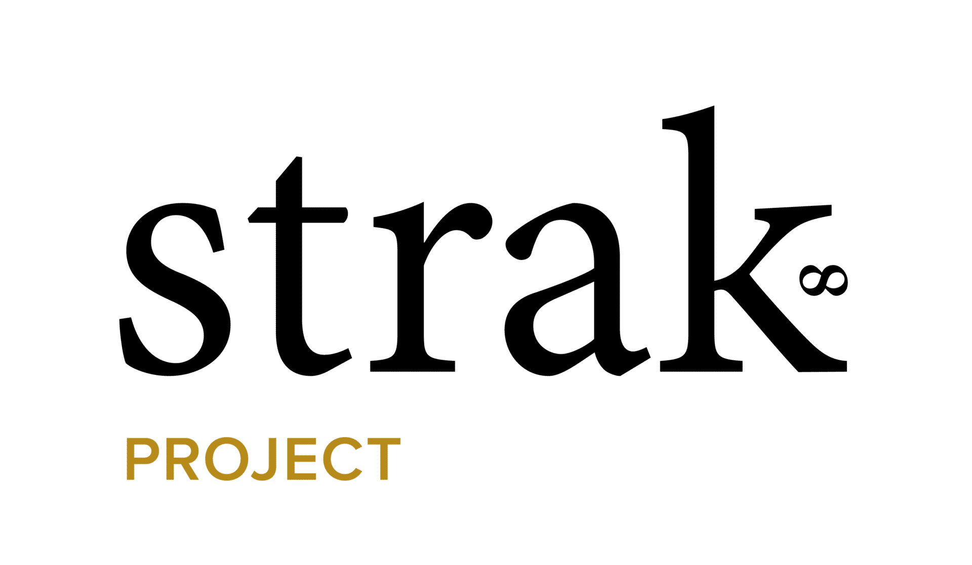 strak bouw bv project